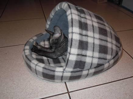 Лежак из поролона для собак